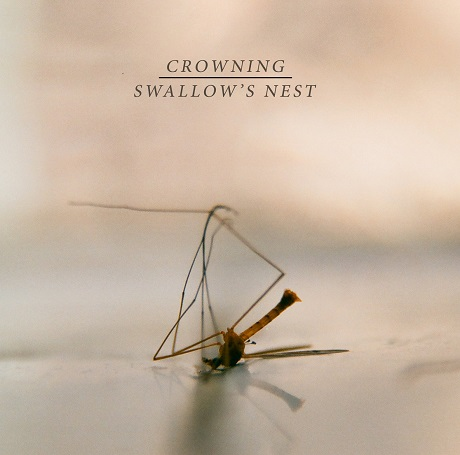 crowning swallows nest split chicago screamo