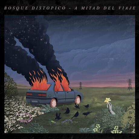 bosque a mitad del viaje argentina dream pop