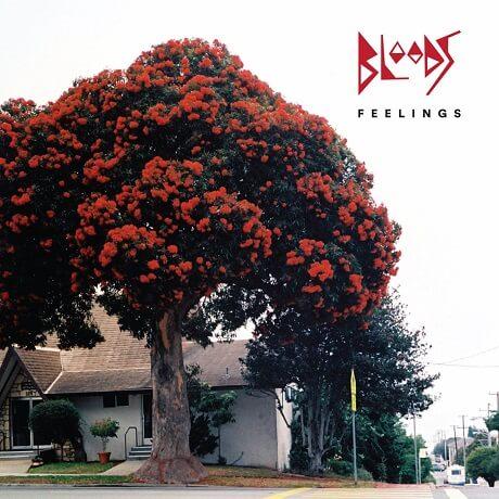 bloods feelings sydney garage indie rock