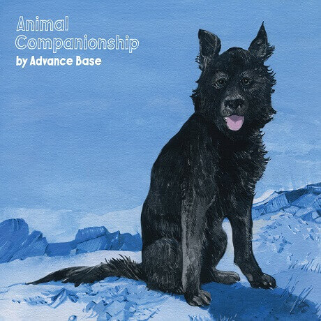advance base animal companionship depressing lo-fi