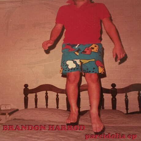 brandon harrod pareidolia ep chicago folk punk
