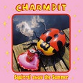 charmpit squirrel away the summer