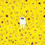 cosmopaark sunflower