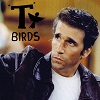 t-birds self titled